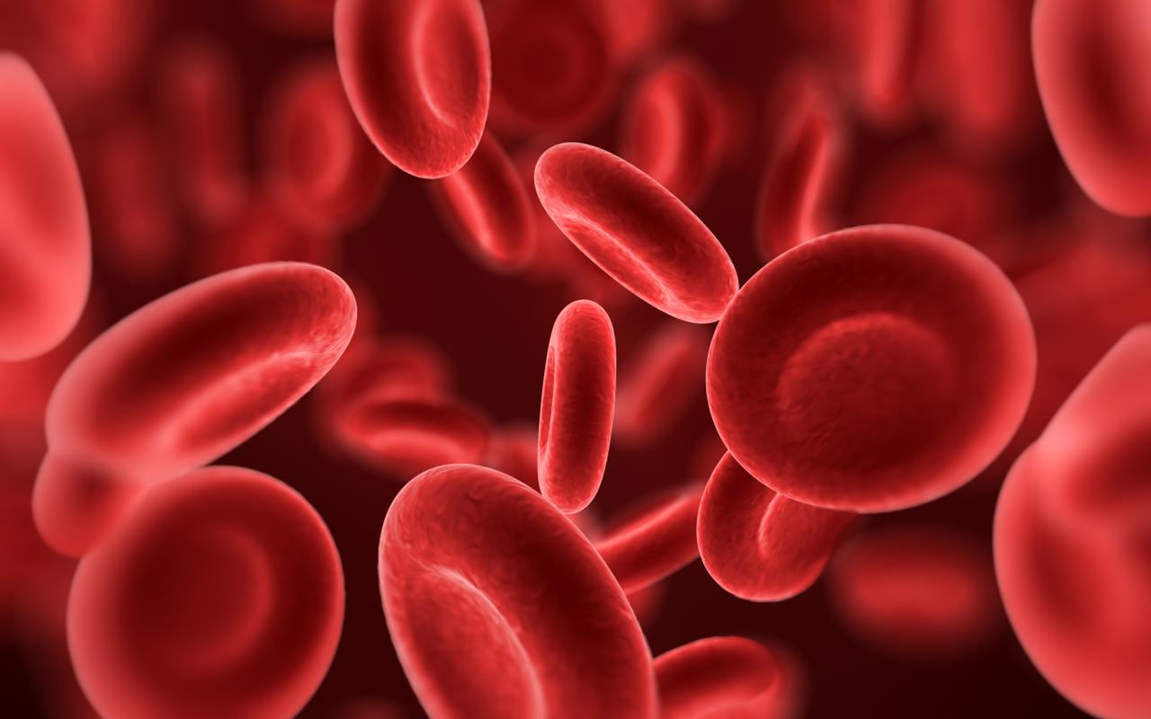 hemofilia-sangue
